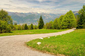 Monte Baldo 06 — Stock Photo