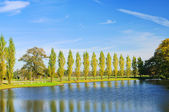 English Grounds of Woerlitz lake 08 — Stock Photo