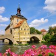 Royalty-Free Stock Photo: Bamberg townhall 03