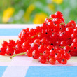 Currant 32 — Stock Photo #11514746