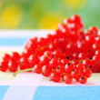 Currant 33 — Stock Photo #11514751