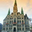 Royalty-Free Stock Photo: Liberec townhall 01