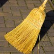 Stock Photo: Broom 01