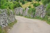 Cres dry stone wall and way 02 — Stock Photo