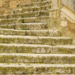 Stock Photo: Steps 05