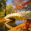 English Grounds of Woerlitz White Bridge 06 - Stock Photo