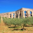 Elvas Aqueduct 05 - Stock Photo