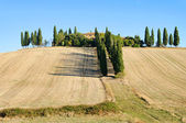 Podere in fall 16 — Stock Photo