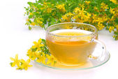 Tea St Johns wort 09 — Stock Photo