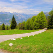 Stock Photo: Monte Baldo 04