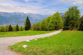 Monte Baldo 04 — Stock Photo