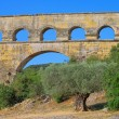 Pont du Gard 01 — Stock Photo #11850538