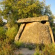 Valencia de Alcantara Dolmen Tapias 04 - Stock Photo