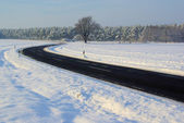 Road in winter 08 — Stock Photo