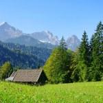 Zugspitze 01 — Stock Photo