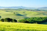 Tuscany hills 55 — Stock Photo