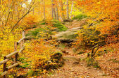 Hiking trail 03 — Stock Photo