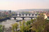 Prague bridges aerial view 14 — Stock Photo