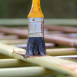 Stock Photo: Paintbrush 20