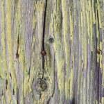 Plank 14 — Stock Photo #12226612