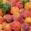 Peach 03 — Stock Photo