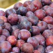Plum 07 — Stock Photo #12232633