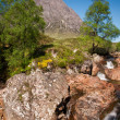 Buachaille Etive Mor in the Glencoe valley — Stock Photo