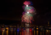 Colorful Firework over the Rhine — Stock Photo