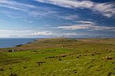 North Coast of the Isle of Skye — Stock Photo