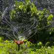 Stock Photo: Garden sprinkler