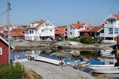 Summer homes on the swedish island of Käringön — Stock Photo