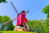 Windmill and green lawn at Brugge — Stock Photo