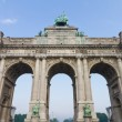 Cinquantenaire — Stock Photo