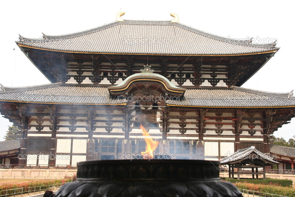 Entire view of Nara temple in japan — Stock Photo #11515497