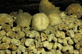 Les Catacombes, Paris — Stock Photo