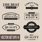 Vector set of vintage labels and banners — Stock Vector