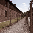 Concentration camp — Stock Photo #10969484