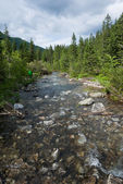Mountain landscape with stream — Stock Photo