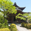 Japanese temple — Stock Photo #10784899