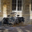 Bikes in the street - Foto Stock