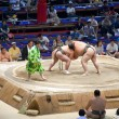 Sumo Tournament — Foto Stock