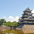Stock Photo: Castle in Japan