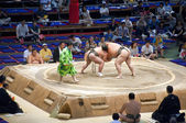 Sumo Tournament — Stock Photo