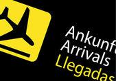 Arrivals in airport — Stock Vector
