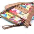 Purse of colors - Stock Photo