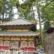 Temple in Nikko — Stock Photo #11486721