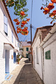 Manolates on Samos — Stock Photo