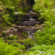 Waterfall in the Thuringian Forest - Photo
