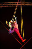 Aerial Artist Liz Williams performes on the Duckstein Festival in Kiel, 2012 August 19 — Foto de Stock