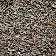 Black tea in bulk — Stock Photo #11561039